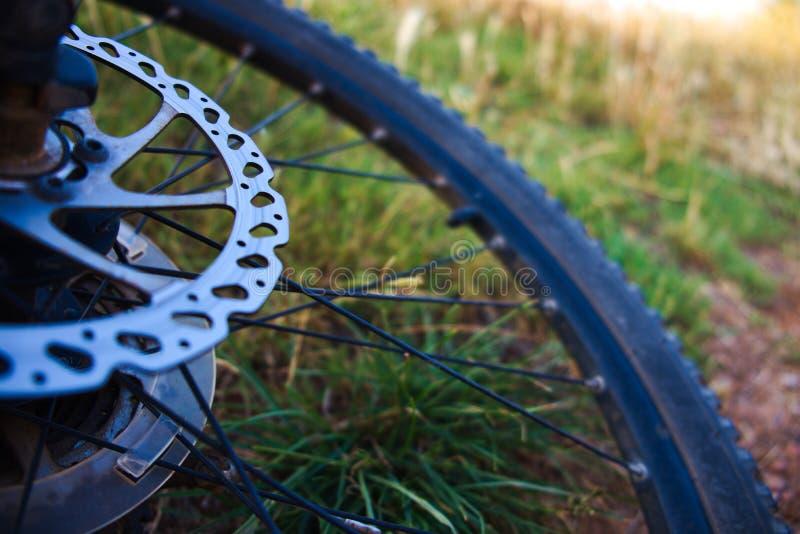 Opinión de la bicicleta de la rueda imagen de archivo libre de regalías