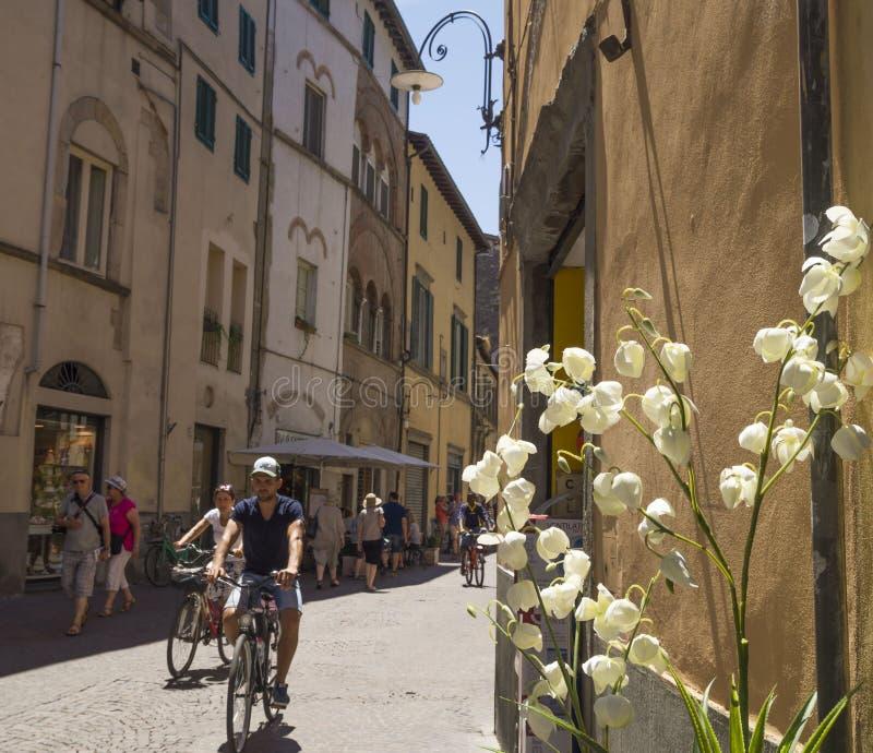 Opinión de la calle en Lucca, la ciudad de Puccini, Italia foto de archivo libre de regalías
