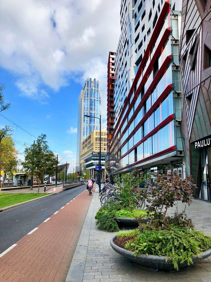 Opinión de la calle de Rotterdam imagenes de archivo