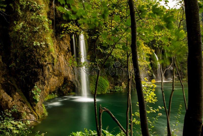 Opinión de la cascada del bosque, en Plitvice, Croacia imagen de archivo libre de regalías