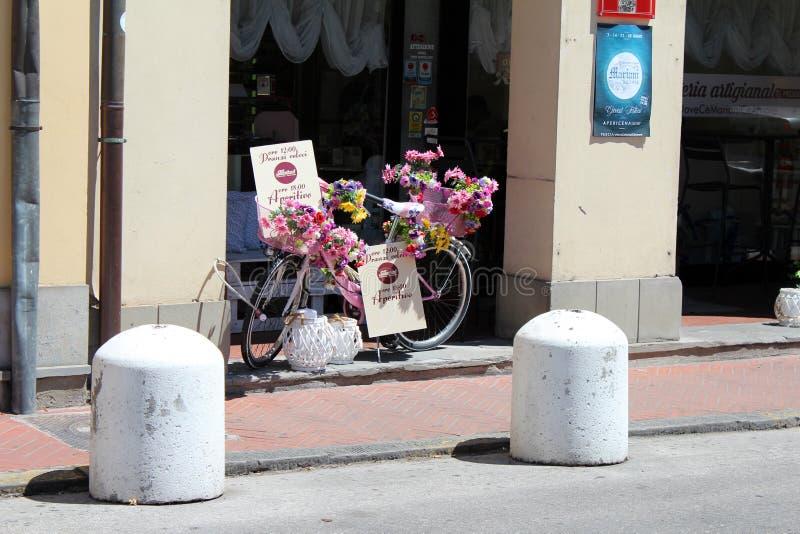 Opinión de la ciudad de Pescia, Italia fotografía de archivo libre de regalías