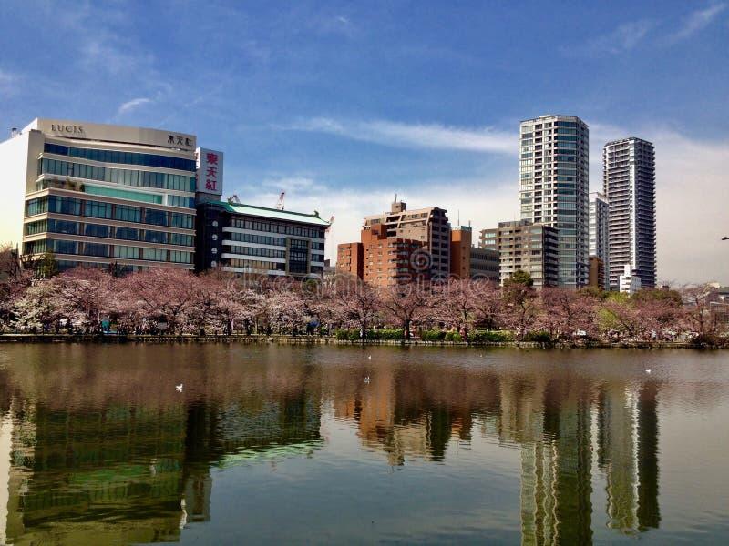Opinión de la ciudad en Japón fotografía de archivo