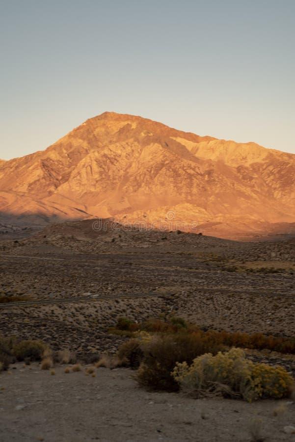 Opinión de la mañana de las colinas, montañas, valle del desierto, montañas del este de Sierra Nevada de los wildflowers, C imagen de archivo libre de regalías