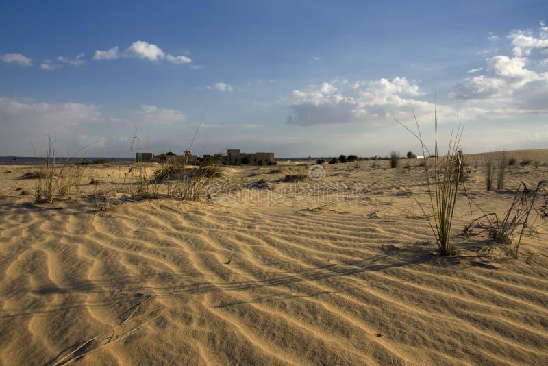 Opinión de la madrugada sobre el desierto fotos de archivo libres de regalías