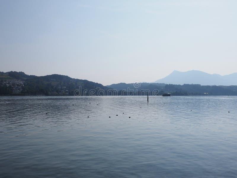 Opinión de la orilla del lago en la ciudad de Alfalfa del europeo en el paisaje del lago en Suiza fotos de archivo libres de regalías