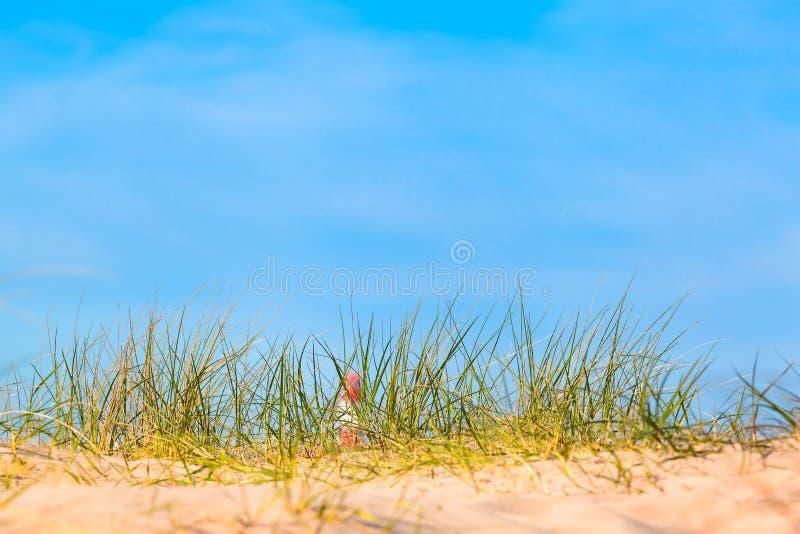 Opinión de la playa al faro de Coastal foto de archivo