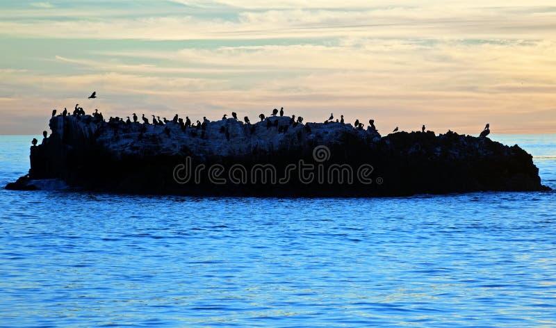 Opinión de la puesta del sol de la roca del pájaro debajo del parque en Laguna Beach, California de Heisler imagenes de archivo