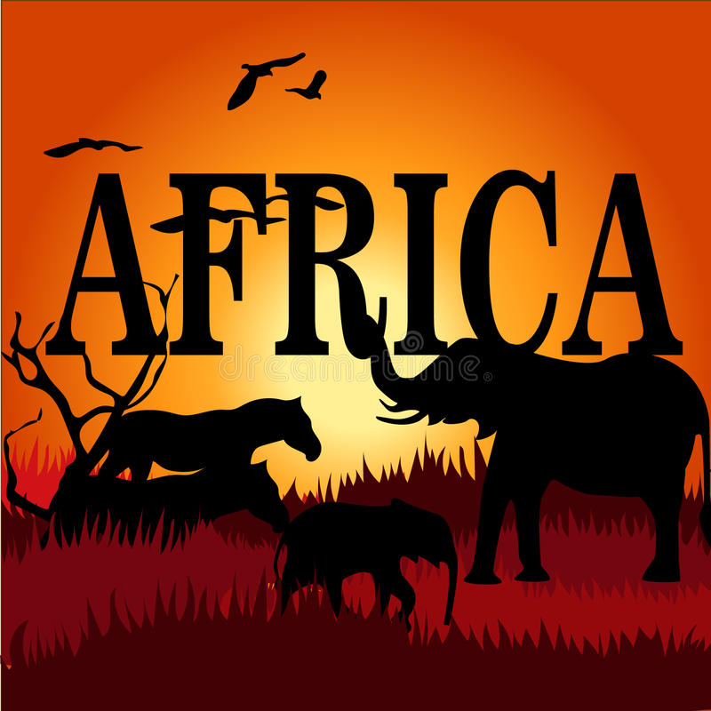 Opinión de la silueta el elefante en la puesta del sol stock de ilustración