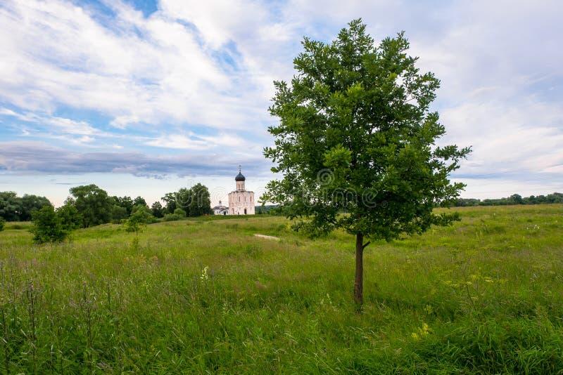 Opinión de la tarde a través del prado de Bogolubovo hacia la iglesia de la intercesión de la Virgen Santa en el río de Nerl fotografía de archivo libre de regalías