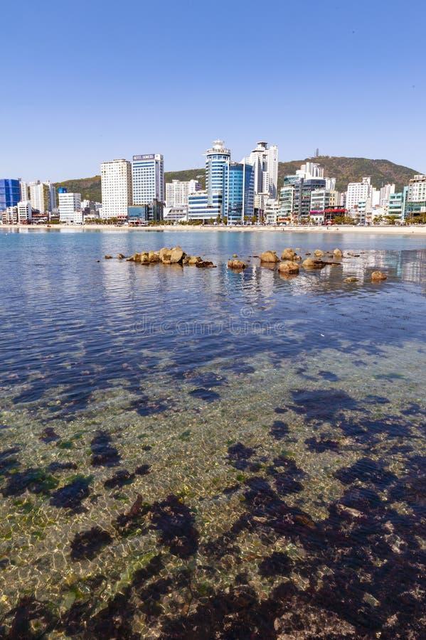 Opinión de la zona costera de Busán en la playa de Gwangalli, un destino turístico popular del paisaje urbano en Busán, Corea del fotografía de archivo libre de regalías