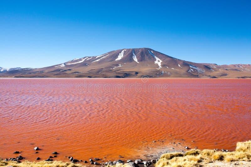 Opinión de Laguna Colorada, Bolivia fotografía de archivo libre de regalías