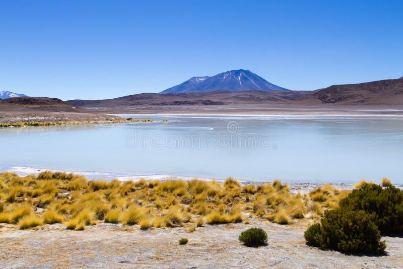 Opinión de Laguna Honda, Bolivia imagen de archivo libre de regalías