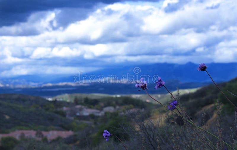 Opinión de Lanscape de un día nublado imagenes de archivo