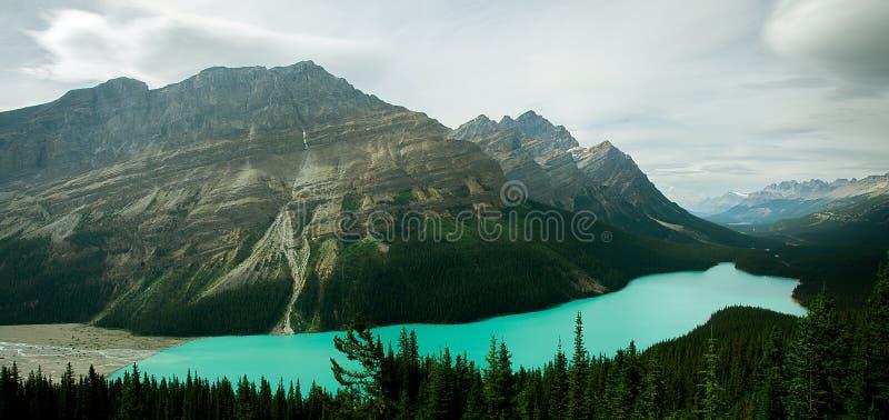 Opinión de Pictoresque del lago Peyto en Rocky Mountains foto de archivo libre de regalías