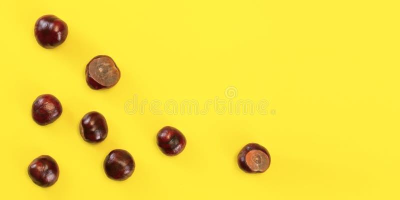 Opinión de sobremesa - castañas de Indias f dispersadas en tablero amarillo Fondo abstracto del otoño con el espacio para el text imagenes de archivo