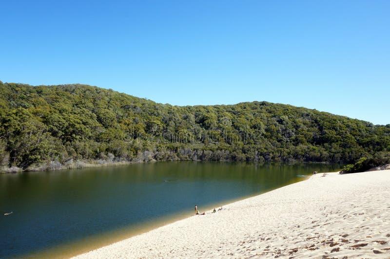 Opinión de Wabby del lago en Fraser Island fotos de archivo