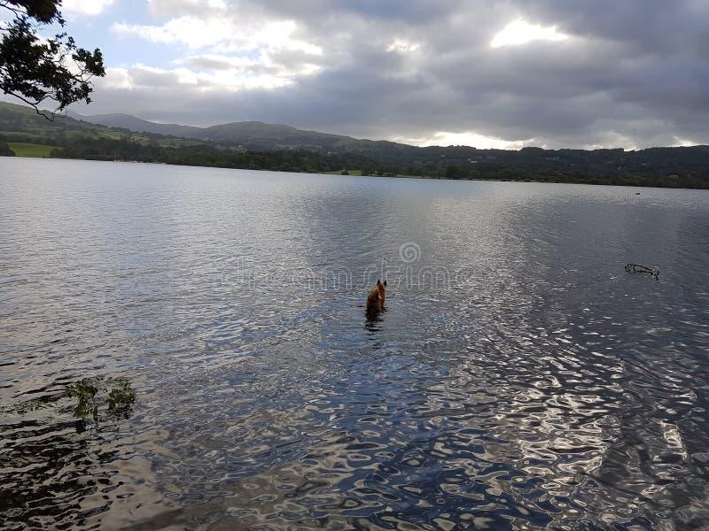 Opinión del agua de Coniston foto de archivo libre de regalías
