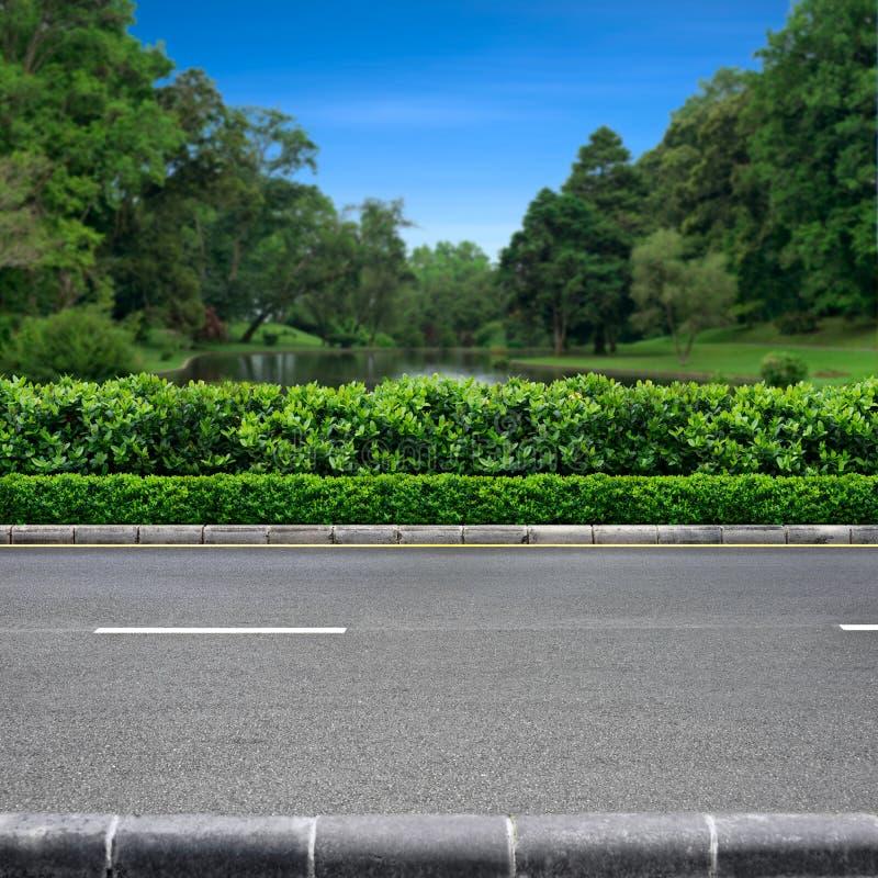 Opinión del borde de la carretera del parque fotografía de archivo