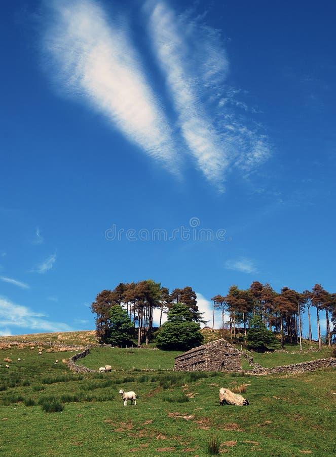 Opinión del campo de los valles de Yorkshire fotografía de archivo libre de regalías