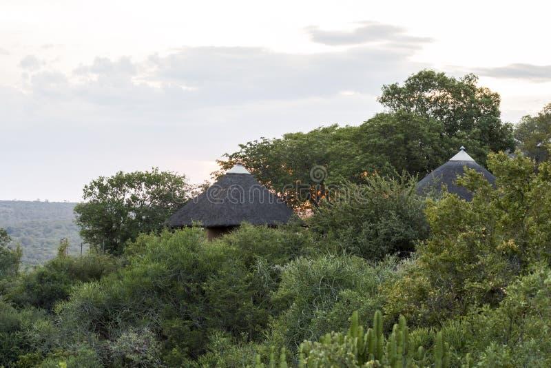 Opinión del campo de Olifants en el parque de Kruger, Suráfrica foto de archivo