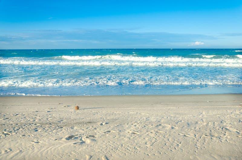Opinión del coco de una playa blanca de la arena en Ceara imagenes de archivo