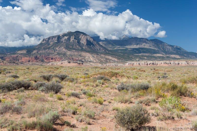 Opinión del desierto de Utah central fotografía de archivo libre de regalías