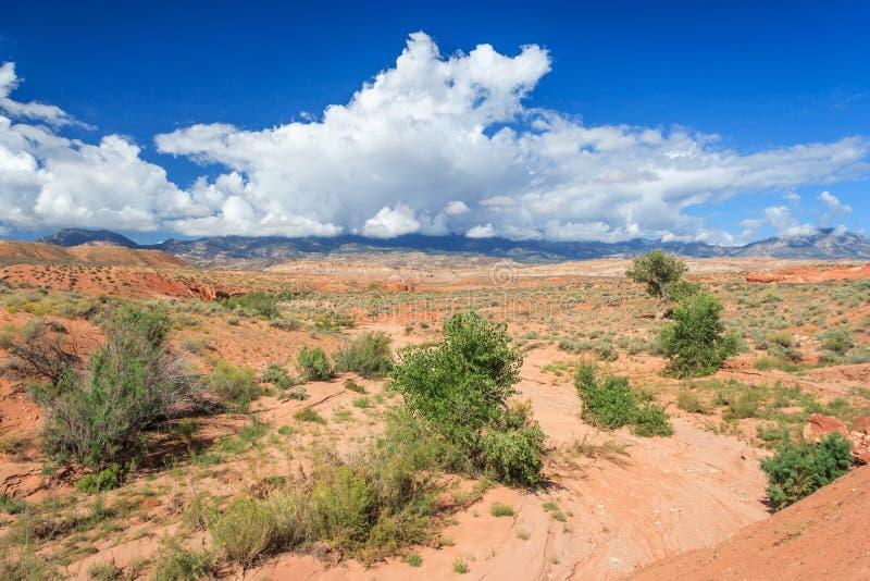 Opinión del desierto de Utah central imagenes de archivo