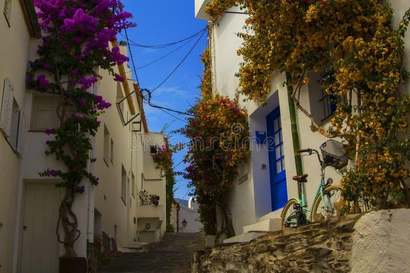 Opinión del fondo de la calle con las casas blancas entrelazadas con los árboles de florecimiento en Cadaqués imagen de archivo libre de regalías