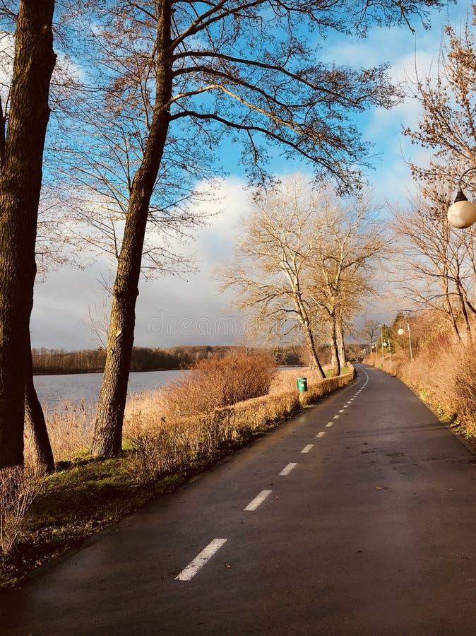 Opinión del invierno en Zlotow, Polonia fotografía de archivo libre de regalías
