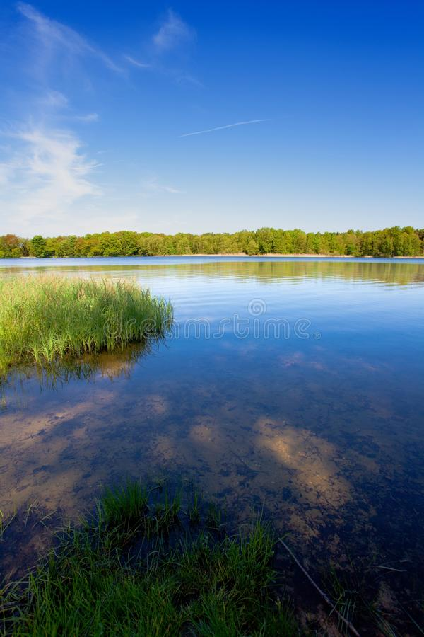 Opinión del lago en primavera foto de archivo libre de regalías