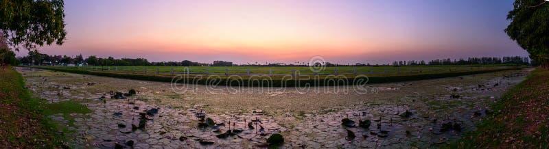 Opinión del lago panorama el loto rosado imagenes de archivo