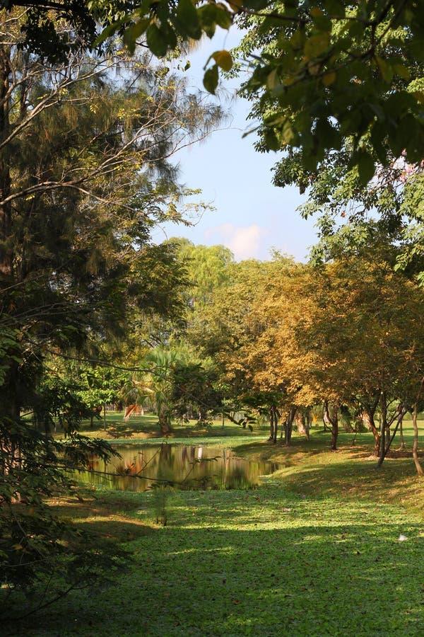 Download Opinión Del Paisaje Del Parque Público De La Mañana Imagen de archivo - Imagen de público, jardín: 64210905