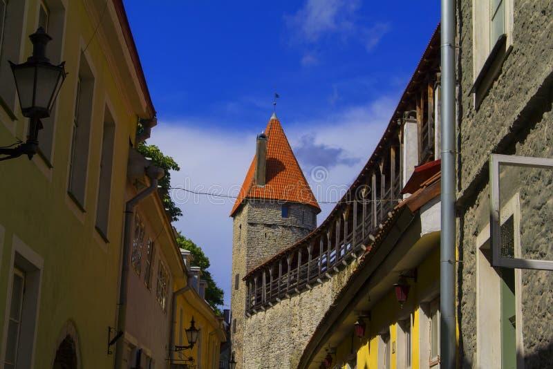 Opinión del paisaje del fondo de la calle torcida de la ciudad vieja en Tallinn, y la pared vieja de la fortaleza con la torre foto de archivo
