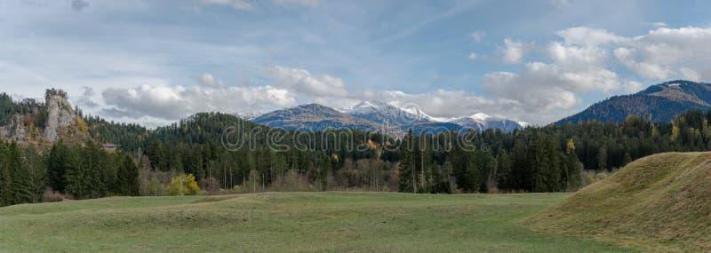 Opinión del paisaje del panorama de pastos y del bosque verdes en colores de la caída con las montañas coronadas de nieve detrás  imagen de archivo libre de regalías