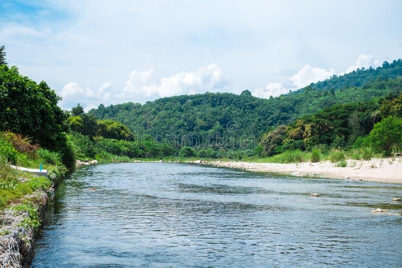 Opinión del paisaje del río del bosque del fondo de la naturaleza con la piedra y el tre fotos de archivo libres de regalías