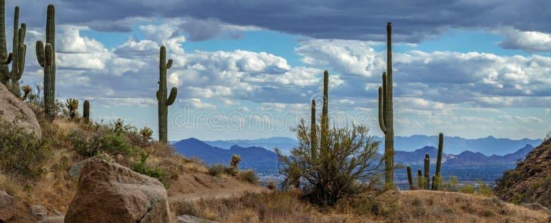 Opinión del paisaje del valle del Sun, Phoenix AZ foto de archivo