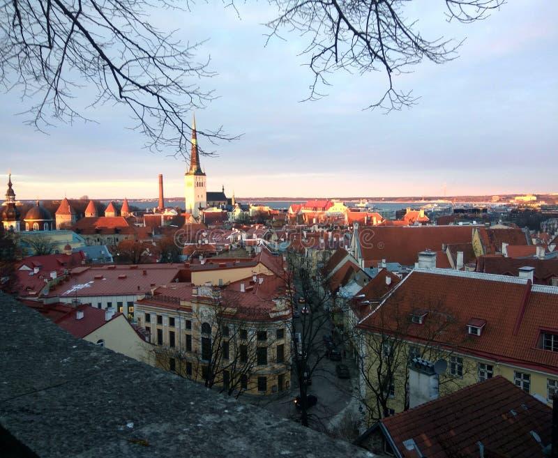 Opinión del panorama de Tallinn imagen de archivo
