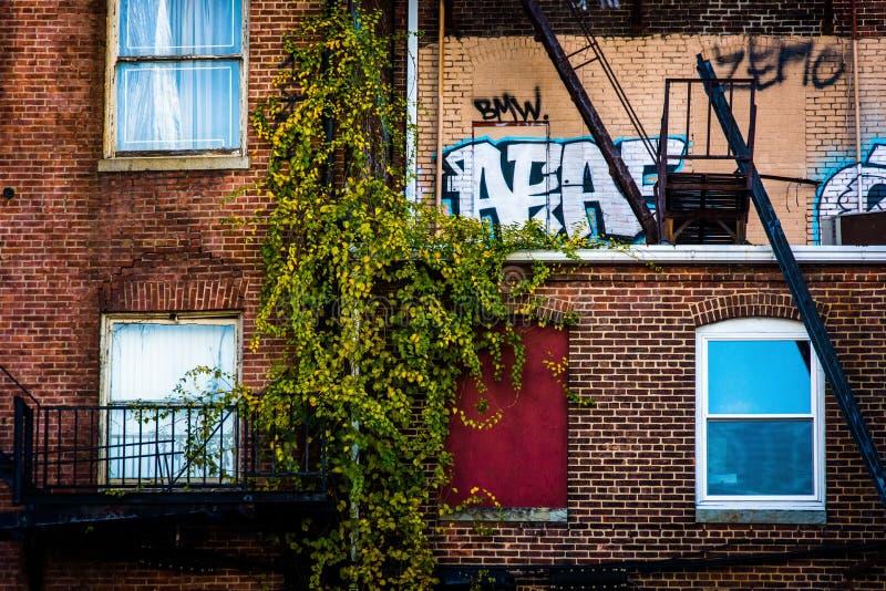 Opinión del primer de edificios viejos en Baltimore céntrica, Maryland fotografía de archivo