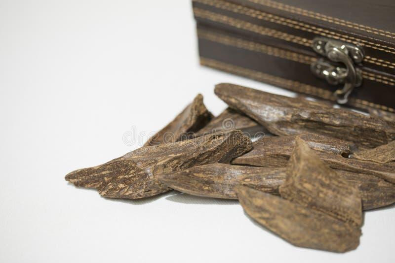 Opinión del primer de la madera del agar: Oud, microprocesadores del incienso, aislados en un fondo fotos de archivo