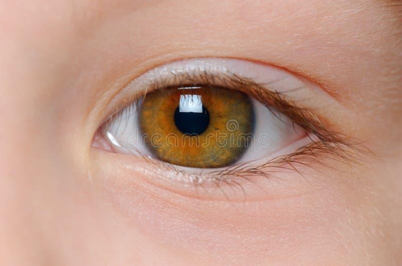 Opinión del primer del ojo fotos de archivo libres de regalías
