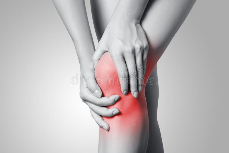 Opinión del primer una mujer joven con dolor de la rodilla en fondo gris fotografía de archivo
