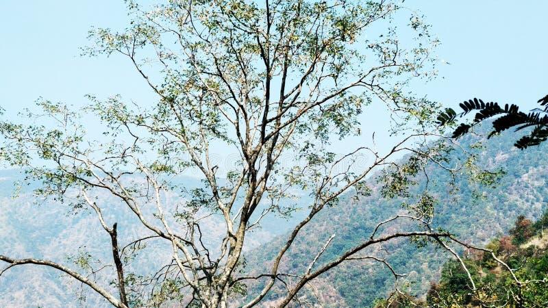 Opinión del punto de la colina foto de archivo libre de regalías