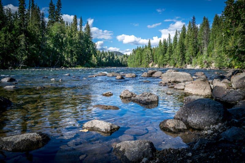 Opinión del río imagen de archivo