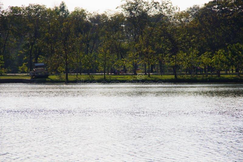 Opinión del río y del parque foto de archivo libre de regalías