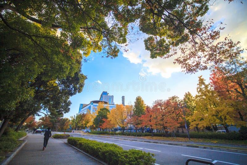 Opinión del stree de Osaka Castle en Osaka, Japón foto de archivo