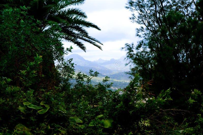 Opinión del valle de las montañas de Oahu Pali imagen de archivo libre de regalías