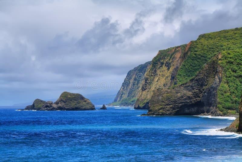 Opinión del valle de Pololu en la isla grande fotos de archivo libres de regalías