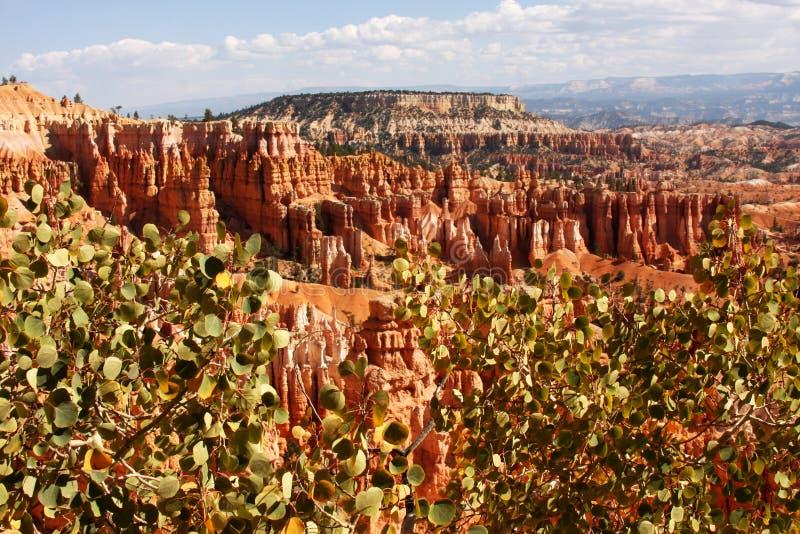 Opinión del verano Bryce Canyon foto de archivo