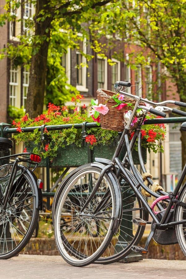 Opinión del verano de bicicletas en la ciudad holandesa Amsterdam imagen de archivo libre de regalías