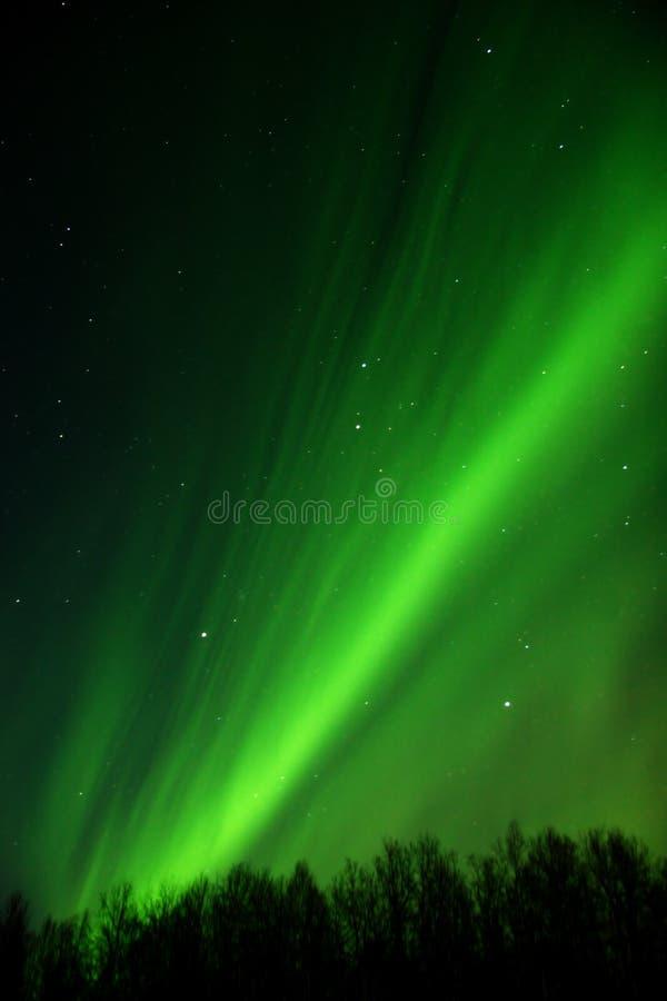 Opinión detallada del arco de los borealis de la aurora imagenes de archivo